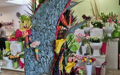 Structure florale de notre apprentie BP