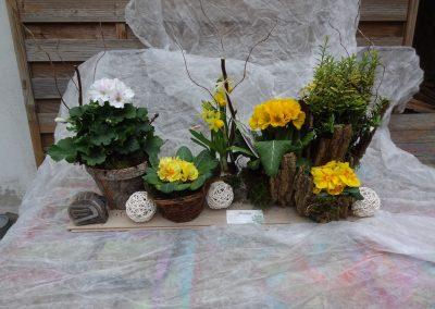 Mini jardin 16