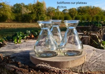 Soliflore_sur_plateau