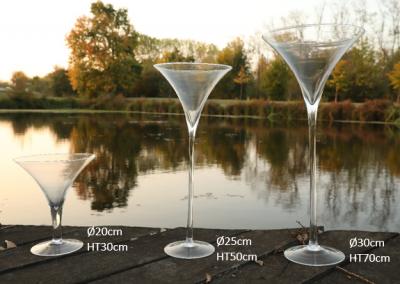 Vases martinis